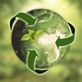 Développement Durable - Bilan Carbone